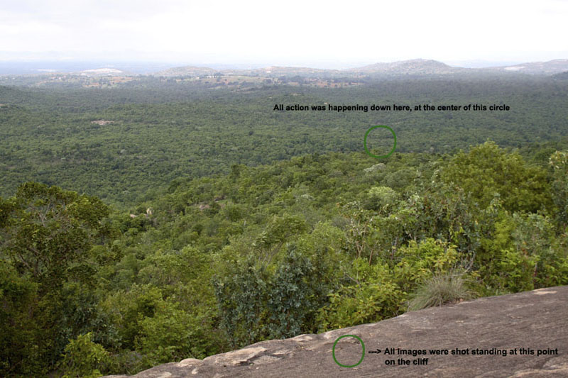 :trip-reports:bannerghatta_june06:mg_2380-view.jpg
